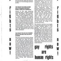 GayRightsNowLeafletCork.jpg